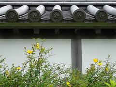 garden13 (spinster cardigan) Tags: summer flower yellow japan wall architecture garden japanese design peace traditional tiles zen creativecommons swirl meditation teagarden    spinstercardigan
