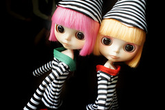 stripe  fairy