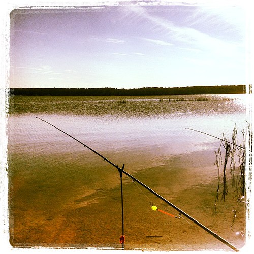 #fish #fishing #che #chel #chelyabinsk #megachel #etkul #sky #water #lake #place #beach #beautiful #pic #shot #weekend