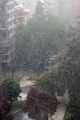 'with locally heavy rains...' (HereInVancouver) Tags: city urban canada rain vancouver downtown bc outthewindow hardrain vancouverswestend