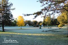 A frosty morning at Church Road Park, Grand Falls-Windsor, NL  CANADA (Tina Dean) Tags: sunlight morninglight frost newfoundlandandlabrador churchroadpark tinadean grandfallswindsornl imagesfromtheshutter tmdean tinagfw tinamdean