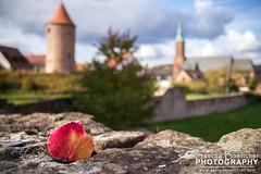 A Dilsberg Autumn I (boettcher.photography) Tags: autumn tower fall church leaves germany deutschland leaf herbst kirche blatt turm bltter neckargemnd dilsberg badenwrttemberg sashahasha festedilsberg