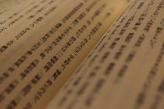 (StephanExposE) Tags: japan canon japanese kanji 1855mm livre japon hiragana japonais   600d lelivreduth  stephanexpose