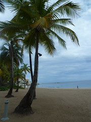 Hotel Ritz Carlton San Juan (El prximo viaje / Victoriamdq) Tags: beach puertorico playa piscina swimmingpool caribbean hotels luxe services hoteles lujo caribe servicios 5stars 5estrellas