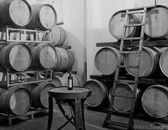 Capezzana (karazavaglio) Tags: travel blackandwhite italy vineyard europe italia european wine barrels famous olive adventure winery study abroad tuscany grapes oil grape vino carmignano capezzana