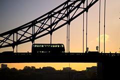 London - Bus on Tower Bridge at Sunrise (David Pirmann) Tags: uk england favorite london towerbridge sunrise hdr