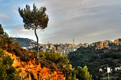 I Stand My Ground (rabiem22) Tags: urban lebanon mountain tree green pine clouds hill structures soil mountlebanon dewelling vision:mountain=0749 vision:clouds=0501 vision:outdoor=077 vision:sky=0867
