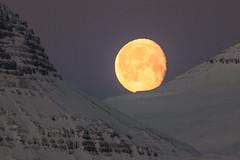 The Moon at 10:40 am (*Jonina*) Tags: iceland ísland faskrudsfjordur fáskrúðsfjörður moon tunglið jónínaguðrúnóskarsdóttir 25faves 50faves explored 300faves 3000views 400faves 5000views 10000views 600faves 12000views 700faves 800faves 13000views 14000views 900faves 15000views 1000faves 17000views 18000views 20000views 25000views 27000views 33000views 35000views 39000views 40000views 43000views 45000views