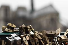 Notre-Dame2 (choisya_t) Tags: paris france 50mm cadenas pont notre dame