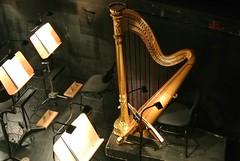 Orchestra Pit (ivlys) Tags: germany deutschland hessen harp darmstadt harfe orchestrapit orchestergraben hessischesstaatstheater ivlys