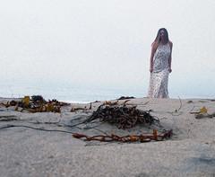 (samosborne15) Tags: california seaweed beach water malibu saltwater elmatador flynnskye