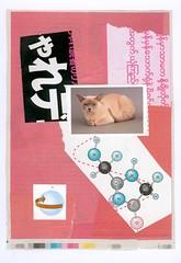 japan pussyの壁紙プレビュー