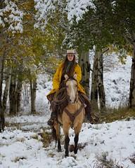 "Allison 3095 (blackhawk32) Tags: winter horses horse snow west cowboys cowboy wyoming cowgirl cowgirls range horseinsnow ""shell wyoming"""