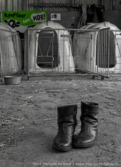 De stal in.... (Thoran Pictures, Thx for more then 5 million views) Tags: lens photography pentax 01 q schoenen laarzen pentaxq madebythoranpictures 01lens theuseofanyoftheimagesinthissetwithoutpriorwrittenpermissionisprohibitedwiththeexceptionofpersonalusebytheindividualsportrayedtherein