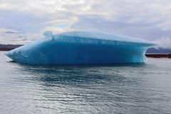IMG_4856a (markbyzewski) Tags: alaska ugly iceberg tracyarm