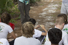 Earth Day at Seacrest Scrub Natural Area (PBC ERM) Tags: education habitat scrub earthday animalidentification seacrestscrub
