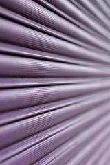 L i n e s. (Alex takes photos.) Tags: color colour lines bug nikon dof purple 14 85mm shutter edit perforated cs3 converging d610 samyang