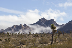Clouds break near the park's West Entrance (Joshua Tree National Park) Tags: california west fog clouds nationalpark desert entrance joshuatree mojave joshuatreenationalpark