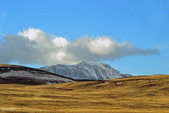 foothills of the mountains (~ Mariana ~) Tags: ab canada nikon prairie rockymountains winter snow sky clouds landscape nature crowsnestpass foothills outstandingromanianphotographers marculescueugendreamsoflightportal travelsofhomerodyssey mariana ~mariana~