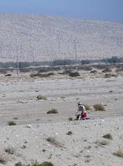 February 4, 2015 (4) (gaymay) Tags: california gay love happy desert palmsprings triad