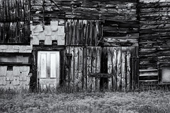 Patchwork Barn B&W (trochford) Tags: barn abstract patchwork pattern lines old weathered peeling abandoned unused overgrown decay wood plank shingle door hillsborough nh newhampshire usa bw blackandwhite blackwhite mono monochrome texture textures textured hillboroughnh