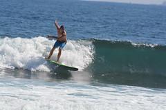 DSC_0055 (aliciadesign) Tags: surf whales bigisland honolii