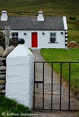 (Eithne Gallagher Photos) Tags: ireland dog rural landscape europe cottage mayo hay achill eithnegallagher wildatlanticway