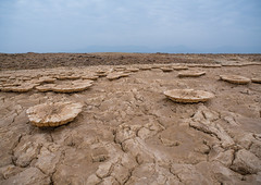 Volcanic formations of dallol in the danakil depression, Afar region, Dallol, Ethiopia (Eric Lafforgue) Tags: africa travel lake color tourism nature beauty horizontal landscape outdoors volcano solitude day desert natural earth acid horizon surreal nobody nopeople formation serenity heat minerals environment sulphur isolation geography geology ethiopia volcanic geothermal interest arid ecosystem hornofafrica afar eastafrica thiopien geological etiopia abyssinia ethiopie etiopa  etiopija ethiopi  etiopien etipia afarregion  etiyopya  dallol   danakildepression       ethio161876