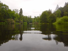teich (Nelis Zevensloot) Tags: teich pond petitlac vijver bosvijver beekhuizen veluwezoom velp nationaalparkdeveluwezoom natuurmonumenten nationalpark naturalbeauty rhododendron