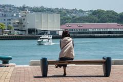 5th Avenue in Sasebo 9 (kmmanaka) Tags: japan harbor 5thavenue battleship usnavy nagasaki sasebo seasidpark