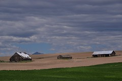 Please rain (Don's View) Tags: farming americanwest palouse us2 easternwashington drylandfarming