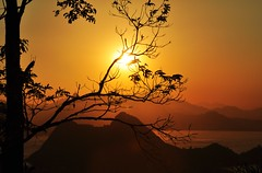 Rio... preciso te ver II (Ruby Ferreira ) Tags: sunset brazil tree brasil bay branches silhouettes hills prdosol rvores baadeguanabara morros silhuetas