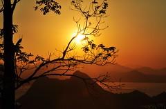 Rio... preciso te ver II (Ruby Ferreira ®) Tags: sunset brazil tree brasil bay branches silhouettes hills pôrdosol árvores baíadeguanabara morros silhuetas
