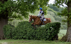 Somerford Park Eventing (wiganworryer) Tags: park 2 horse animal sport canon fence lens photography is photo jumping image zoom outdoor mark picture keith event riding ii hedge 200 7d l series gibson 70 f28 mk equine horseriding 2016 eventing somerford wiganworryer