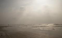 padre_island_beach_6D4333 (cold_penguin1952) Tags: beach gulfofmexico corpuschristi padreisland