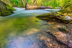 Tenaya Creek Flowing (ScorpioOnSUP) Tags: longexposure trees nature leaves photography nationalpark moss rocks stream mirrorlake logs yosemitenationalpark creeks tenayacanyon landscapephotography tenayacreek mirrorlaketrail