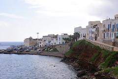 Marettimo, Egadi islands, Sicily, October 2015 536 (tango-) Tags: marettimo egadi sicilia sizilien