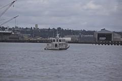 Seattle Police Patrol boat 9 2016 WA IMG_9653 (RSPT49) Tags: seattlepolicedepartment patrol boat harborisland seattle patrolboat9