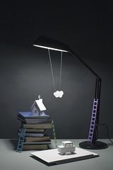 paper work.. (CatMacBride) Tags: house lamp car paper desk books ladder