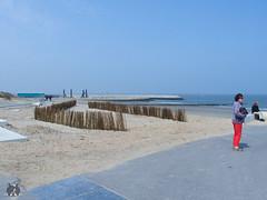 Urlaub in Cadzand-Bad Mai 2016 (Josef17) Tags: cadzandbad urlaubmai2016