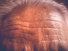 Faded Texture 6 (Shakti Banik) Tags: old texture time age experience forehead wrinkles