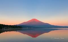 -  Akafuji (yamanaito) Tags: red mountain lake japan fuji ngc fujisan    mtfuji yamanashi fujiyama morgenrot   yamanakako  akafuji
