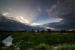 () Tags: sunset landscape glow rice farm taiwan    yunlin