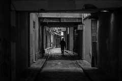 Bastille - Passage du Chantier (Nikan Likan) Tags: street white black paris zeiss vintage lens photography 50mm prime du jena mount mc german carl ddr manual passage bastille praktica depth filed chantier | 2016 czj carlzeissjena prakticar 14