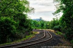 Walking the tracks June 1, 2016 (ronchap4) Tags: camera nature june train landscape outside drive photo bottle nikon tracks scene ron daytime dslr hdr elysburg 2016 phototgraph d5300 ronchapman ronaldjchapman