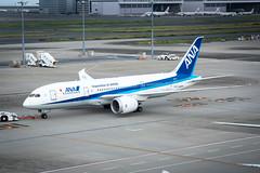 Boeing 787 -  787 (Michael Torii) Tags: ana allnipponairways     tokyo international airport terminal observationdeck haneda japan    boeing 787 dreamliner