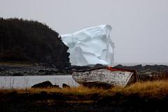 Large Iceberg Coming Around the Mountain Face, L'Anse aux Meadows area, Newfoundland (Joseph Hollick) Tags: ice newfoundland iceberg lanseauxmeadows icebergalley