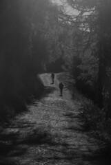 Anche su una strada senza bivi... #2 (VALERIA MORRONE  ) Tags: trees alberi donna nikon elmo ombre uomo monte valeria sentiero alto montagna luce controluce helm salita adige d60 morrone cammino