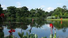 001 Botanic Gardens (bjean21) Tags: singapore nightsafari