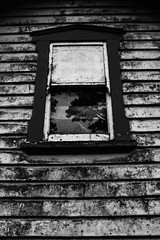 """...""""how old would you be..... (dawn.tranter) Tags: light building tree window reflections mono blackwhite age wellworn howold dawntranter"""